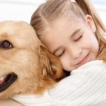 cuidados-de-mi-mascota-ante-la-cuarentena