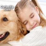 beneficios-de-tener-mascotas-para-los-niños